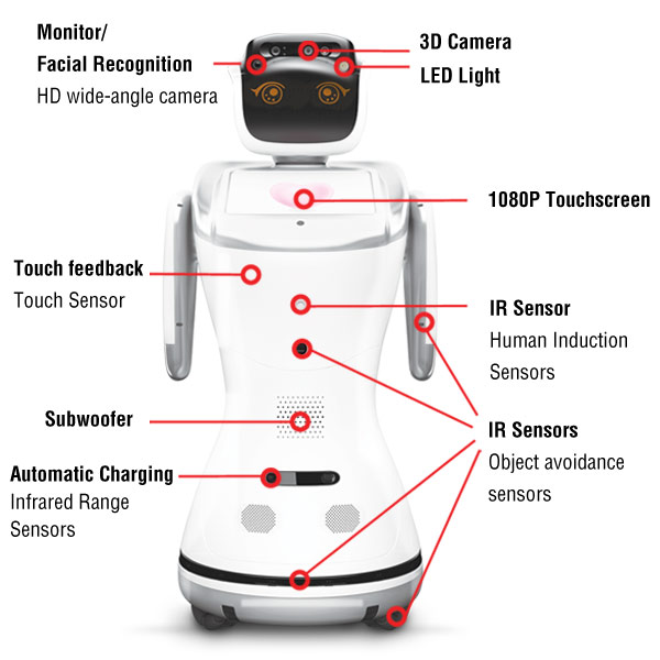 anewtech-service-robot-sanbot-specification